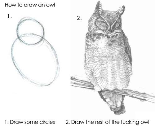 draw-an-owl